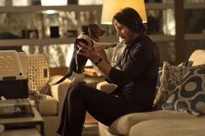 John Wick chien